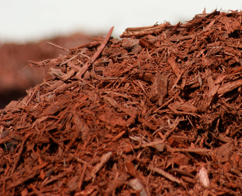 Enjoy the benefits of mulching your garden
